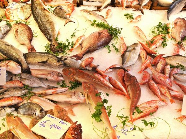 Sicily Anti pasti